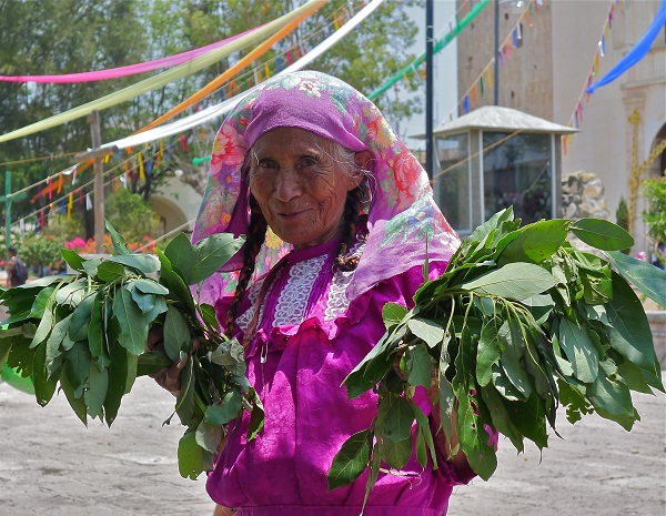 tlacolula-avocado-leaf-seller